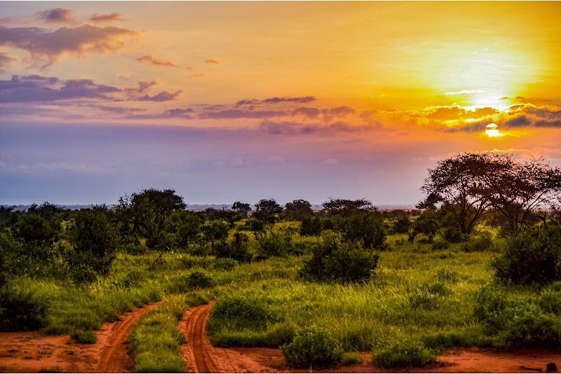 La mia Africa di Francesca Maifredi ©