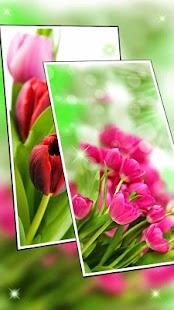 Pink Spring Flower Live Wallpaper - náhled