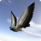 City Bird Fly Simulator 2015