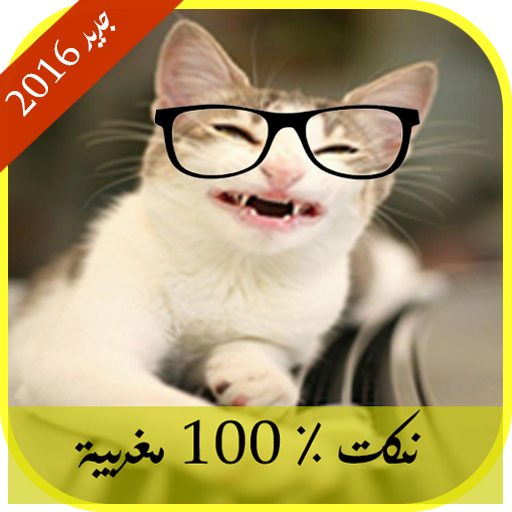 نكت  % 100 مغربية تقتل بالضحك