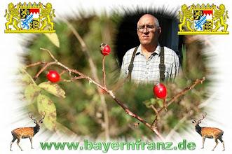 Photo: Servus und herzlich Willkommen liebe Albumbesucher www.bayernfranz.de