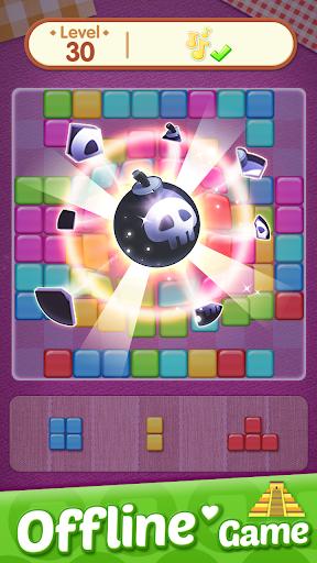 BlocKing Puzzle 1.0.5 screenshots 4