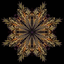Firework Flower by Helen Nickisson - Abstract Patterns ( pattern, wall art, abstract, artwork, fireworks, flower )