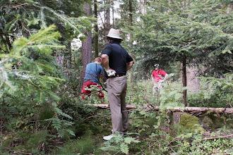 """Photo: Das ging daneben: Eriks Abschlag an der 14 traf einen Baum, prallte nach rechts in den Wald. Nach einigem Suchen wurde er gefunden. Die Entscheidung, den Ball von dort zu schlagen, wird er wohl künftig nicht mehr treffen. Er brauchte dann noch zwei weitere Schläge, um überhaupt rauszukommen. Besser wäre gewesen: Nach Finden des ersten Balles, diesen für """"Unspielbar"""" zu erklären und mit einem Strafschlag dann vom Tee Schlag Nr. 3 zu machen. Fazit: mit einer 8 auf der Scorekarte ging er vom 14. Grün. Das war bitter."""
