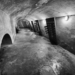 Arsenal wine celler by Bob Stafford - Buildings & Architecture Public & Historical ( building, black and white, teurnuzen, historic district, terneuzen, netherlands )