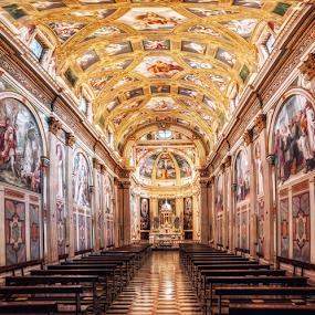 Certosa di Garegnano, Milano by Andrea Conti - Buildings & Architecture Places of Worship ( certosa di garegnano, milan, garegnano, italia, church, ceiling, milaninterior, certosa, architecture, italy, certosa di milano )