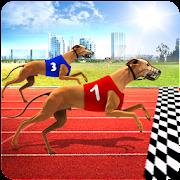 World Dog Racing Tournament 2018: Crazy Dog Race
