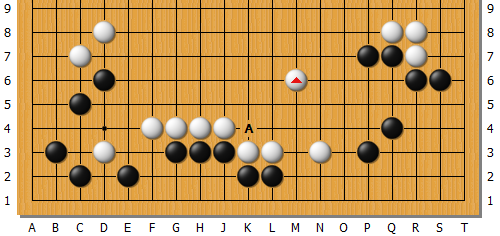 Fan_AlphaGo_01_58.png
