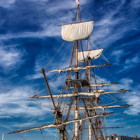 L'Hermione Filling the City Dock by Deborah Felmey - Transportation Boats ( wooden ship, waterscape, sailing, tall ship, transportation,  )
