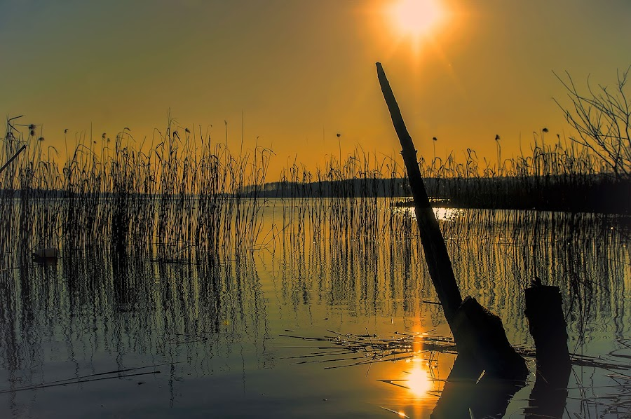 evening impression by Tomasz Marciniak - Landscapes Waterscapes ( impression, lake, evening )