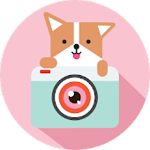 Cozy Camera-Photo&Video Editor