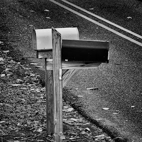 Mail Boxes by Grady  Welch - Black & White Objects & Still Life ( boxes, black & white, b&w, mail boxes, mail )