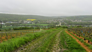 Photo: la Marne, Nogent-l'Artaud en arrière plan