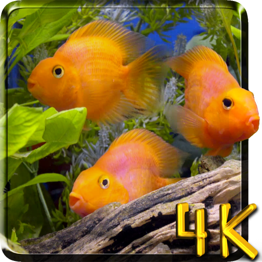 Aquarium 4K Live Wallpaper file APK Free for PC, smart TV Download
