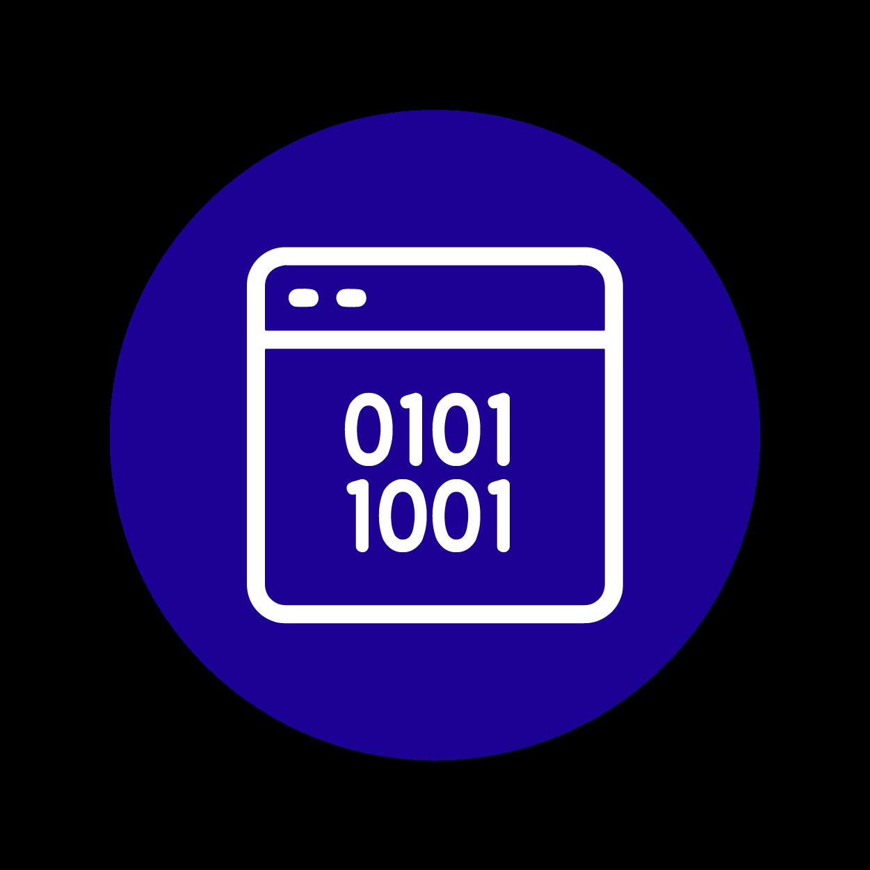 Binary Code Analysis