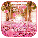 Cherry Blossom Theme icon