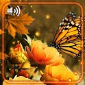 Butterfly Amazing HD icon
