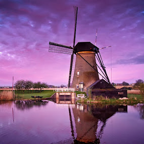 Windmill of Kinderdijk by Lukáš Lang - Buildings & Architecture Public & Historical