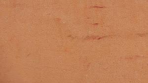 béton ciré couleur terre cuite pour appliquer soi-même avec box prête à l'emploi avec produits complets pour réaliser soi-même un béton ciré
