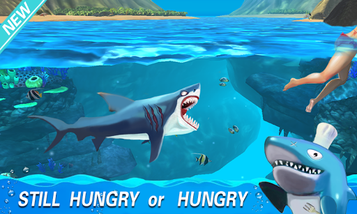 Hungry Megalodon