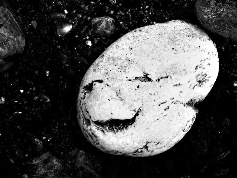 Se sorridi la vita ti sorride di Rodema