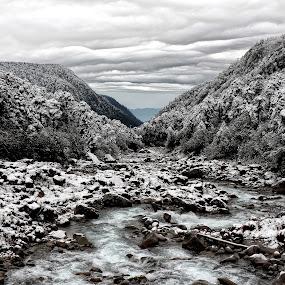 After a Snowfall by Rathin Halder - Landscapes Travel (  )
