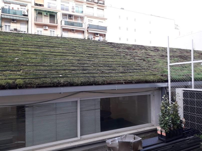 Construcción cubierta rizoma
