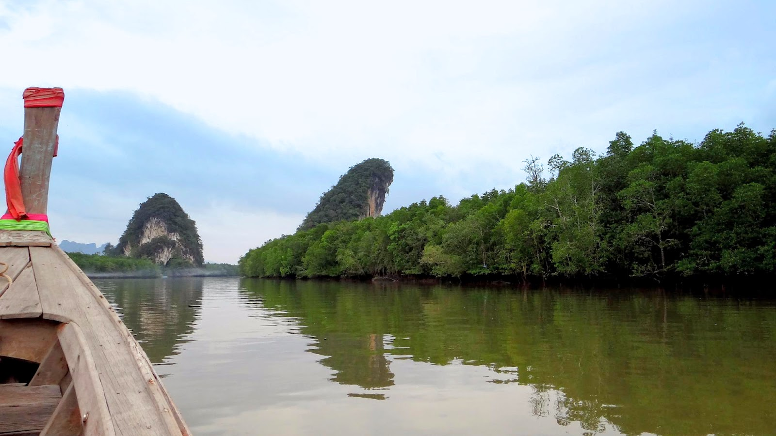The Mangrove Boat Tour in Krabi