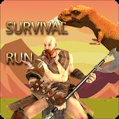 Survival Run Game
