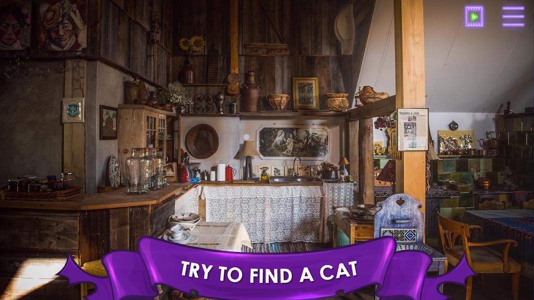 Find a Cat: Hidden Object