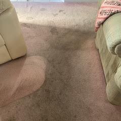 dirty carpet before