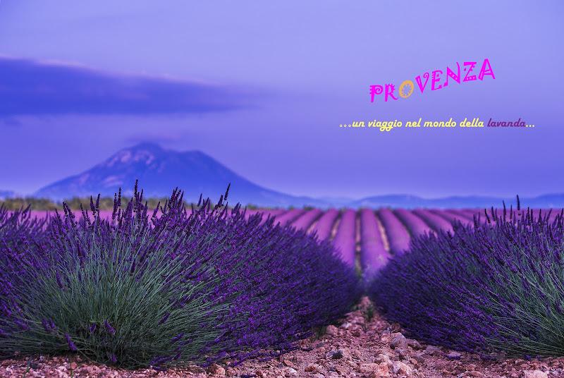 Provence di Eduard