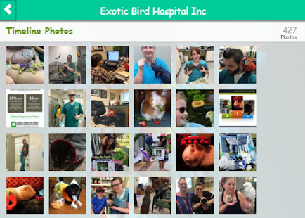 Exotic Bird Hospital- screenshot thumbnail