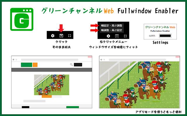 グリーンチャンネルWeb Fullwindow Enabler