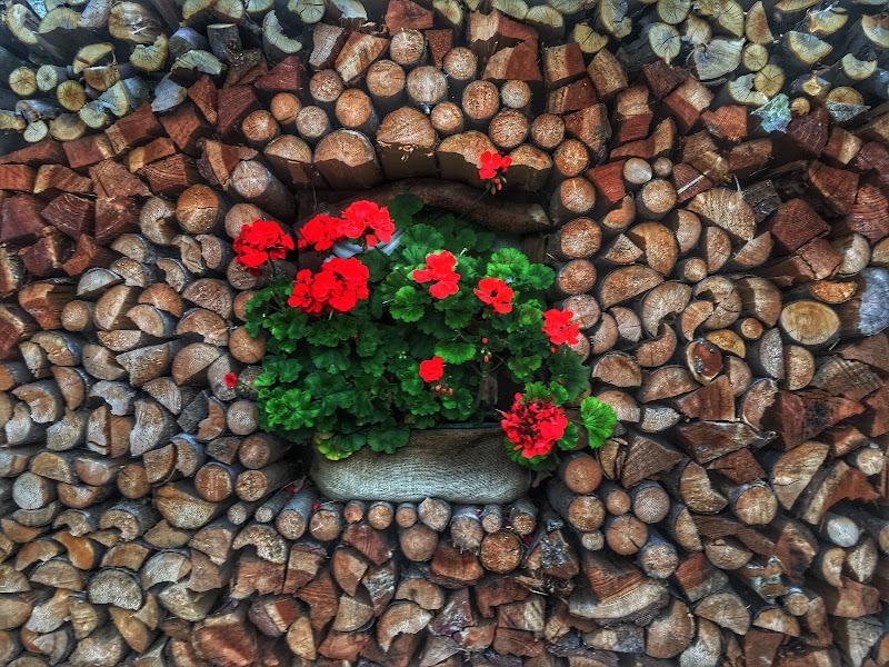 Catasta con fiori di gianfi51