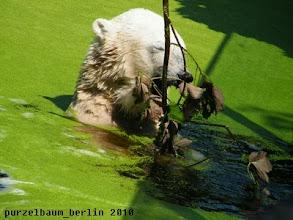 Photo: Und schon beginnt der Wasserspass :-)