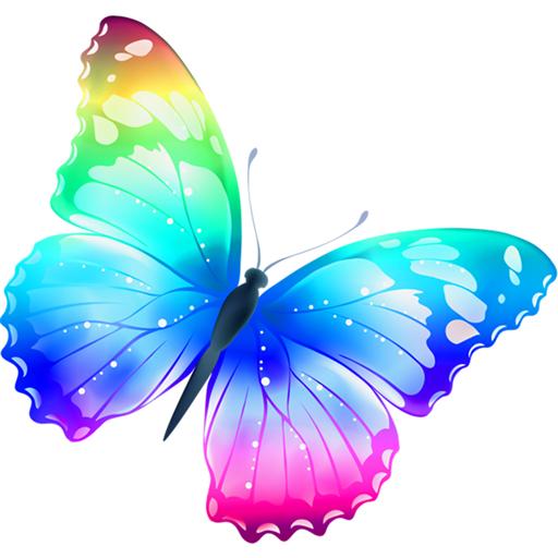 MT Butterfly