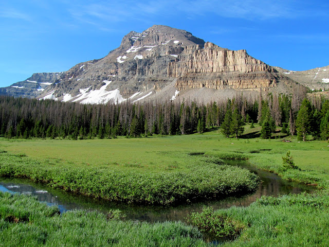 Ostler Peak over Amethyst Meadow