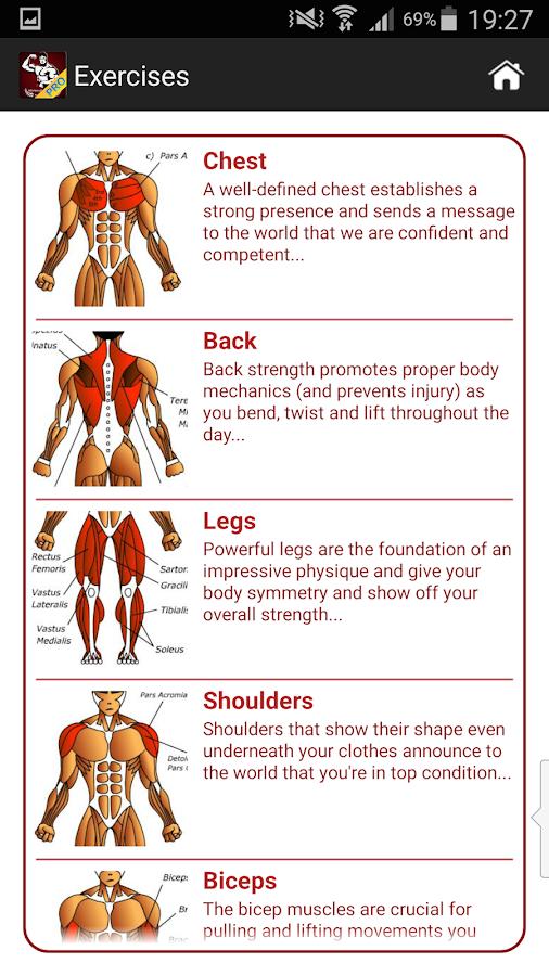 Mega Muscle Gain Workout Free Screenshot