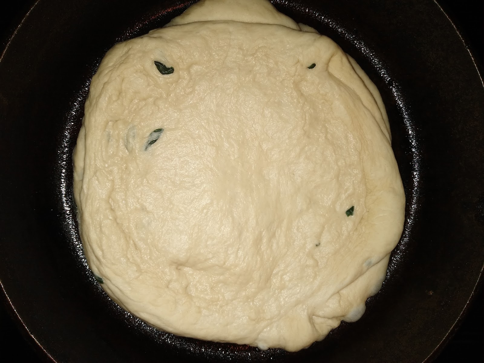 homemade pizza dough picture