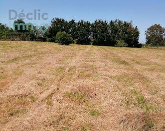 terrain à Théhillac (56)