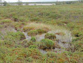 Photo: Волок из Хышлора в следующее озеро.