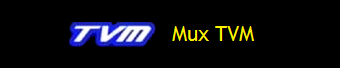 MUX TVM