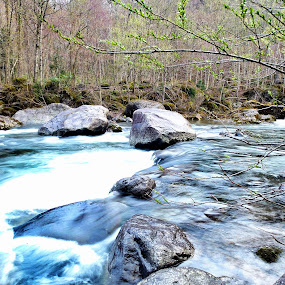 River in the Hakkoda Mountains by Allanah Faherty - Novices Only Landscapes ( water, japan, aomori, landscape, river )