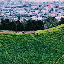 Mt. Eden by Alif Aidid - City,  Street & Park  Vistas ( akl nz )