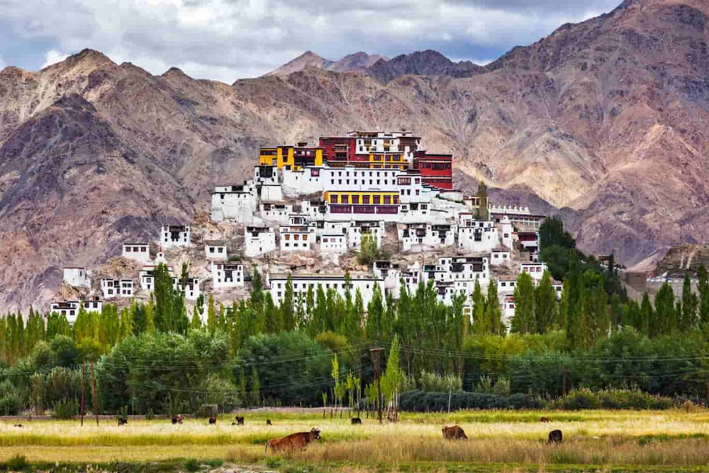 india-summer-destinations-Ladakh