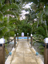 Photo: The hidden, secret hot tub on the garden side of the resort.