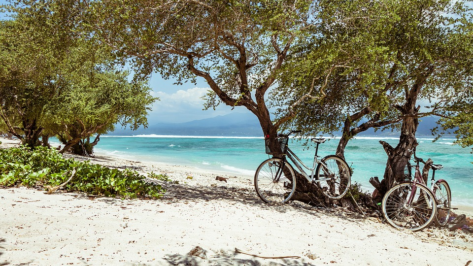 beach with bicycles