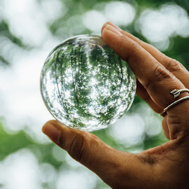 All you need is a different perspective. by Meet Engineer - Artistic Objects Other Objects ( nikon, forest, reflection, bokeh, crystal ball )