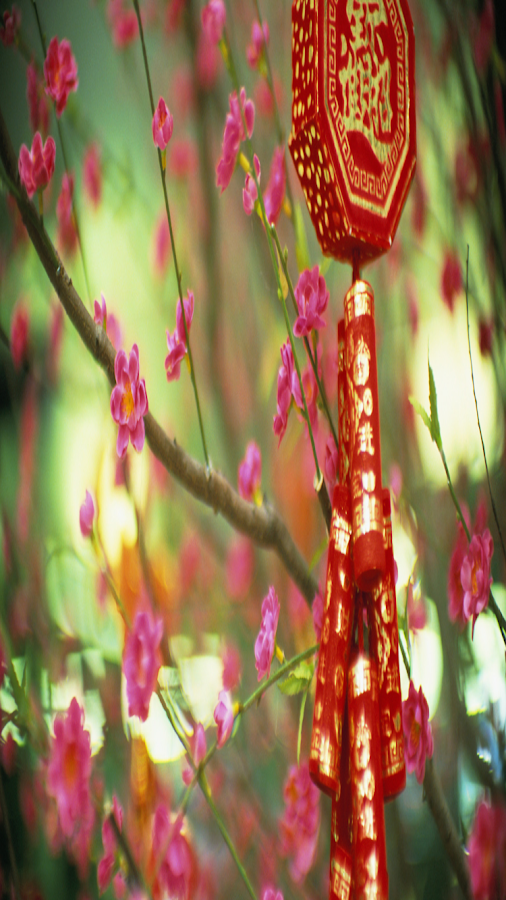 chinese new year 2015 iphone wallpaper. chinese new year hd wallpapers ...